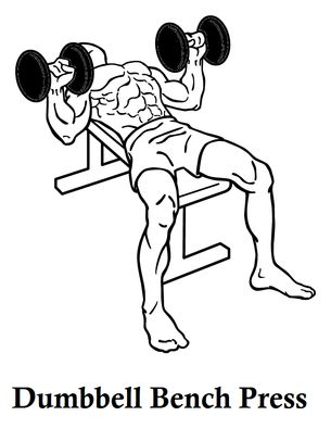 How To Make Muscular Chest In Hindi